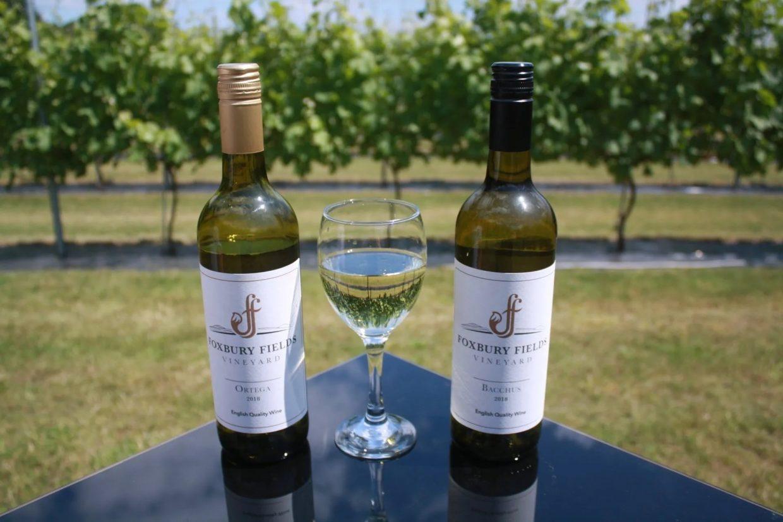 Foxbury Fields Bacchus and Ortega wines. Wye Life